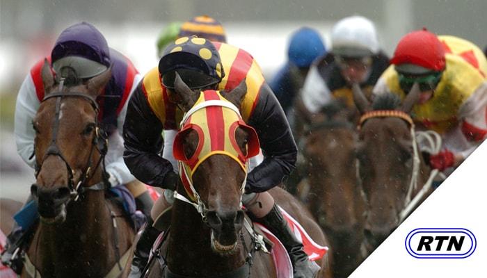Watch Horse Racing