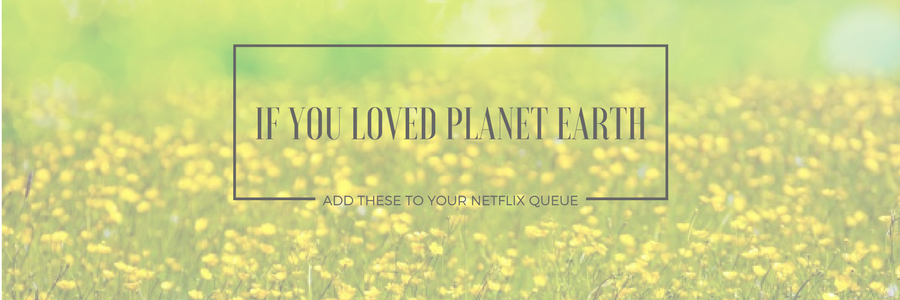If You Loved Planet Earth, Add These 3 Documentaries to Your Netflix Queue