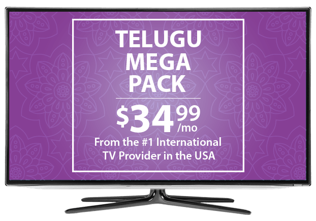 Telugu TV Channels From DISH